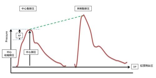中心脈圧図2.jpg